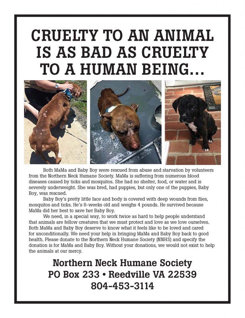 cruelty ad